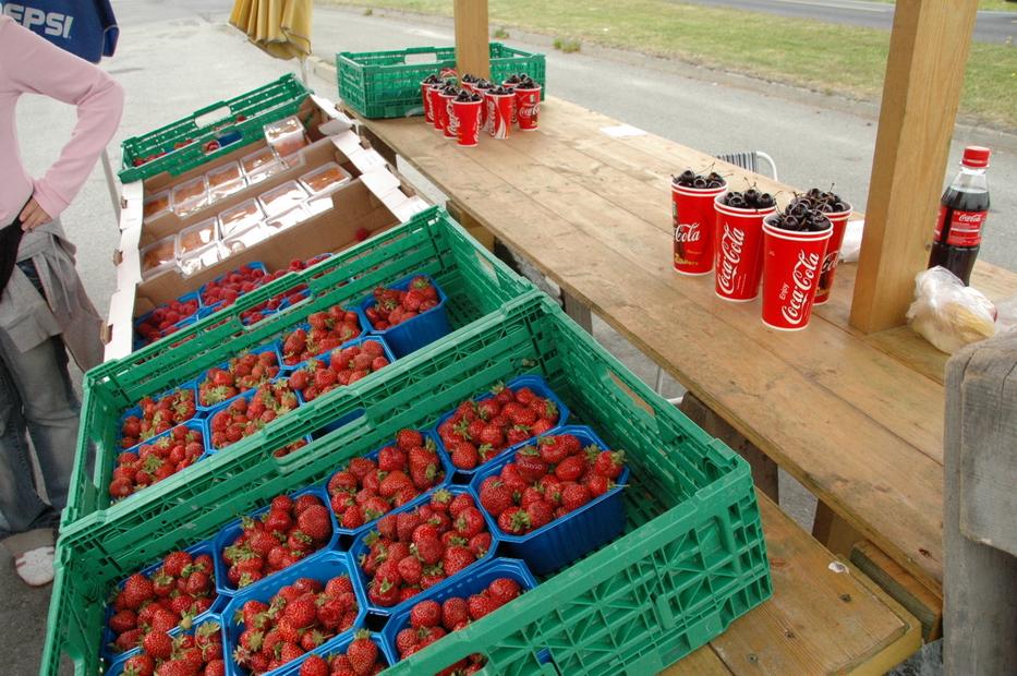 северные ягоды