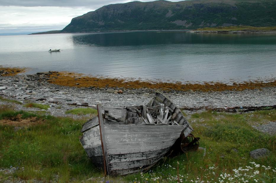 лодки здесь гниют